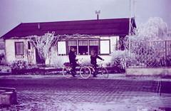 winter in holland (14) (bertknot) Tags: winter winterinholland