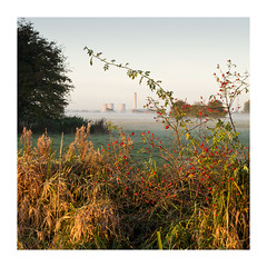 Didcot Power Station (Nandhor) Tags: morning mist field berries farmland didcot magichour goldenhour didcotpowerstation pentaxart