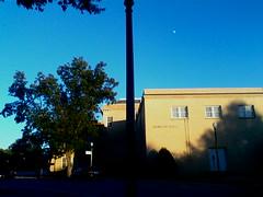 Morgan Hall (BBWFILM) Tags: b winter tree mono la hall photo foto d g c cellular chrome f e morgan captures monchrome œ a į ł