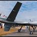 Predator - USAF