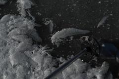 DSC_0160 (Aaron Diamond13) Tags: mountmoran swcouloir