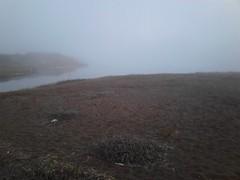 (sftrajan) Tags: california winter beach fog mar hiver marincounty oceano rodeobeach goldengatenationalrecreationarea