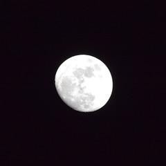 月(2014/02/12) (asat4) Tags: moon sony α7r