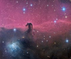 The Magnificent Horsehead Nebula in Orion (Oleg Bryzgalov) Tags: orion ic434 deepspace astrophoto b33 ngc2023 barnard33 astrometrydotnet:status=solved astro:subject=horseheadnebula astrometrydotnet:id=nova229755 astro:gmt=20131104t2130