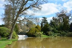 Sheffield Park Gardens (John A King) Tags: park gardens sussex national trust shffield
