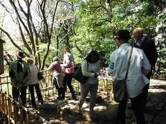 DSCF0249 (sherdnerdess) Tags: japan garden tokyo kantou