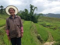 Terrasses de riz Yuanyang