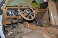 "1979 Pontiac Firebird • <a style=""font-size:0.8em;"" href=""http://www.flickr.com/photos/85572005@N00/19309205941/"" target=""_blank"">View on Flickr</a>"