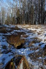 DSC_4850 (PorkkalaSotilastukikohta1944-1956) Tags: neuvostoliitto hylätty bunkkeri porkkalanparenteesi kirkkonummi porkkala abandoned soviet bunker kirkkonummiurbanexploration kirkkonummiporkkalanparenteesi zif25