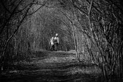 Hansel and Gretel (Philocycler) Tags: outdoor blackandwhite stillmannaturecenter children run fun light shadows winter explorers canon canon5dmarkiii