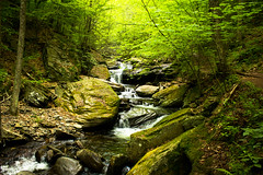 Ricketts Glen Waterfall 9 (Ken Kohl) Tags: water contrast speed creek river landscape waterfall high slow glen shutter dreamy seconds ricketts