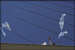 Argentinidad (JustLeo) Tags: argentina k puente mujer buenos aires victoria bandera argentinidad justle