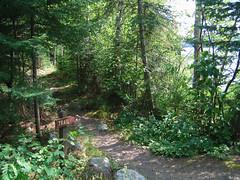Kimball Lake hiking trail