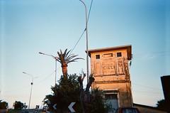 Arma di Taggia (slo:motion) Tags: architecture italia liguria contax ciel palmtree t2 rivieradiponente