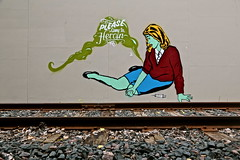 Biafra Inc. (Urban Camper.) Tags: street b streetart color art wall lady train paint please rail line needle drugs come heroin aerosol inc aerosolart biafra greencloud biafrainc 4dk pleasecomeinheroin
