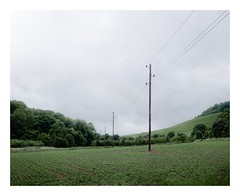 (VisualLifeLine) Tags: leica green germany landscape 50mm power grain meadow pole southern summicron 20 f8 cultural m9
