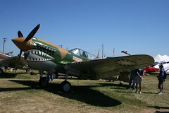 "P-40 Warhawk (2) • <a style=""font-size:0.8em;"" href=""http://www.flickr.com/photos/81723459@N04/9276710357/"" target=""_blank"">View on Flickr</a>"