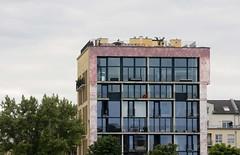 Solitär, Frankfurt am Main 2013 (Spiegelneuronen) Tags: frankfurtammain deutschherrnufer solitäre