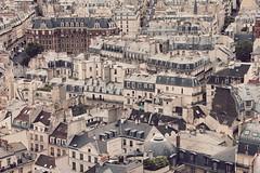 Sous les toits de Paris (jartana) Tags: paris france roofs francia tejados