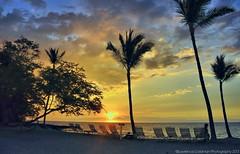 Girl at Beach Watching the Sunset (lhg_11, 2million views. Thank you!) Tags: sunset vacation sky beach clouds island hawaii silhouettes palmtrees bigisland loungechairs anaehoomalubay hawaiianislands sunsetcolors kohalacoast waikaloabeachresort