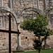 mosteiro-de-salzedas-4
