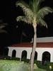 West Palm Beach, FL (robynlreynolds) Tags: westpalmbeach angels ghosts orbs spiritphotography spiritguides griefhealing robynlreynolds