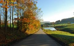 Martin Road Fall Colors (thoeflich) Tags: fallcolors autumnleaves autumncolors westernpennsylvania washingtoncounty falllandscape martinroad