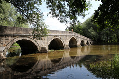 roman bridge (cyberjani) Tags: bridge reflection tree water river sarajevo bosnia bosna abigfave