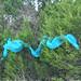 Trees_of_Loop_360_2013_046
