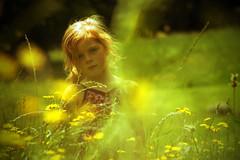 Meadow green (Jodie Maria) Tags: flowers light portrait sun green grass child natural canvas filter