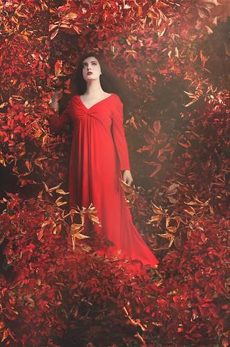 Autumn's Lover