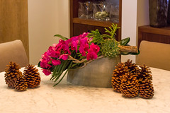 _MG_5712 (Halfrican4111) Tags: christmas flowers floral pine design cone greenwich lilac pinecone root winston arrangements montreux phaelonopsis echaveria