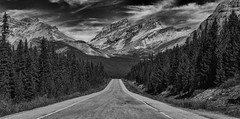 The Road to the End (Jeff Clow) Tags: road travel vacation holiday landscape getaway albertacanada roadway banffnationalpark icefieldsparkway jeffrclow jeffclowphototours
