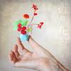 Winter Song Of Paper Garden. Mini Oribana 'fresh Attitude'