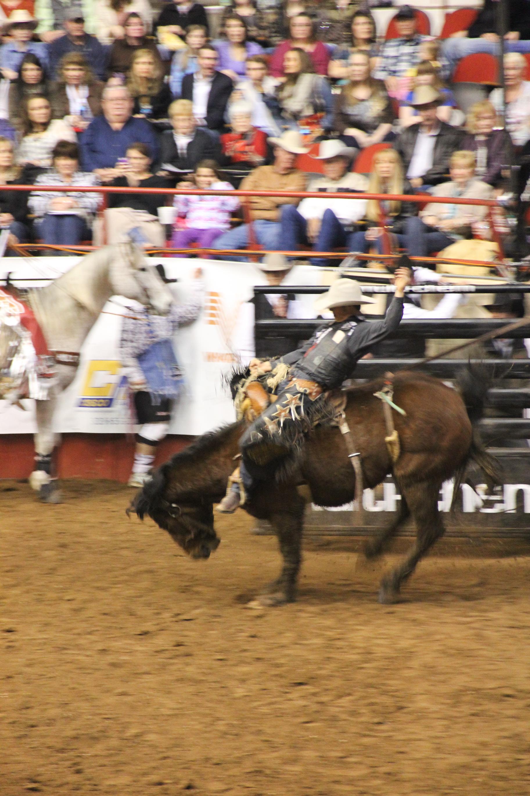Photos Of San Angelo Stockshow Amp Rodeo Jcutrer Com