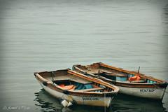 (Ali_Kemal) Tags: boats boat istanbul mehtap kayık denizkızı beykoz kayıklar