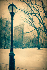 Vintage NYC (little~ny) Tags: park new york old city nyc newyorkcity winter urban snow cold building tree texture nature vintage paper season square snowy antique style landmark parchment historic retro midtown lamppost madison page madisonsquarepark toned flatiron textured manhatan
