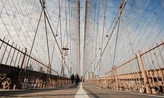 Brooklyn Bridge (Explore 21/02/14) (only lines) Tags: city nyc bridge newyork suspension cables brooklynbridge