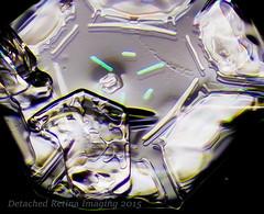 2014-25.jpg (Detached Retina) Tags: snowflake winter white de crystals chaos close neige icy macros snowfall wintery flocon schneeflocke    lumehelves