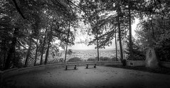 Stuttgart Viewpoint