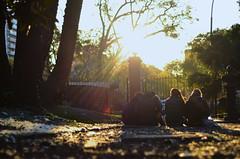 Amigos Turistas (G4lvez) Tags: inglaterra amigos textura luz sol contraluz atardecer gente buenos aires jardin personas botanico grupo francia turistas