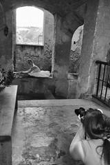 Fotografa la ballerina (pinomangione) Tags: pinomangione fotografi caterina tropea biancoenero monocromo persone