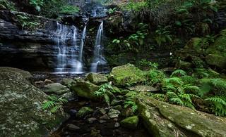 Fairy Bower Falls || Bundanoon