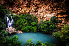Waterfall Orat (oussama_infinity) Tags: oussama infinity photography canond650 earth panoramique photo photograph alger algérie canon camera nature world d650 image الجزائر السماء geographic أسامة كانون صورة صور فوتوغرافي مستغانم mostaganem اسامة 650d canon650d panorama بانوراما طبيعة outdoor landscape gren أخضر خضراء bright grassland mountain جبل شجرة tree cave cavern waterfall orat telemcen شلال الأوريط اوريط