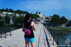 DSC08751T (bornvoyage) Tags: france avignon provence pont davignon bridge lavender cut 法國 亞維儂 亞維儂大橋 橋 古橋 old oldbridge 薰衣草 river rhone 羅納河 普羅旺斯