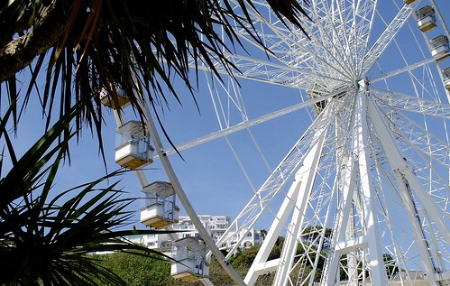 Palms & English Riviera Wheel Torquay