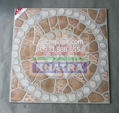 Gạch sân Đồng Tâm (50x50) Trường Sa