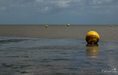 Oh Buoy (Chrisipe Photography) Tags: kent whitstable buoy tideout odc buoyant canonef24105mmf4lisusm canon60d ourdailychallenge thetideischanging