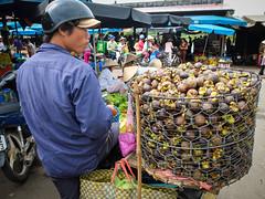 Vietnam (Matthew E. Maddock) Tags: vietnam fujifilm x20