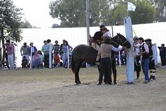 _DSC6512 (jaramillohectorsergio) Tags: argentina jujuy 9dejulio jineteada josehernandez palpala patriaytradicion